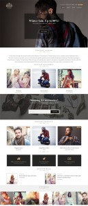 Hugo – A SuperStore eCommerce WordPress Theme – CssIgniter Review